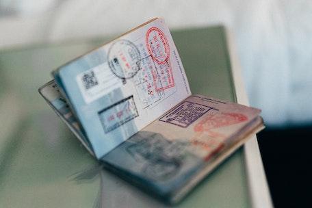 Рабочая виза для выпускников высших учебных заведений